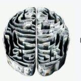 Allt om Serotonin