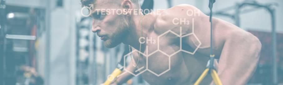 Allt om testosteron
